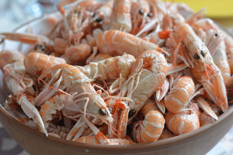 Close-up of prawns