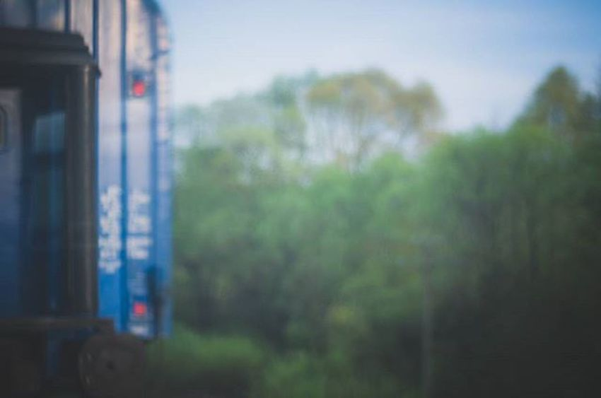 Window Windows Green Greenery Spring Train Travel Travels Lookingouttrainwindows Trees Tree Forest Inmove InMotion Colors Color Photography Photo Nikon Nikon_photography_ Focusing
