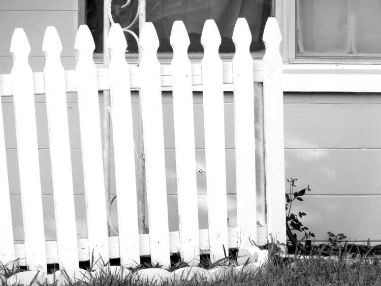 Monochrome Photography White Picket Fence Outdoors Nature Pattern, Texture, Shape And Form Lines Fence Blackandwhite Florida AloneShapes , Lines , Forms & Composition Textures And Surfaces Untold Stories Shapes And Forms Pattern Pieces Shapes Light And Shadow Streetphotography Maximum Closeness
