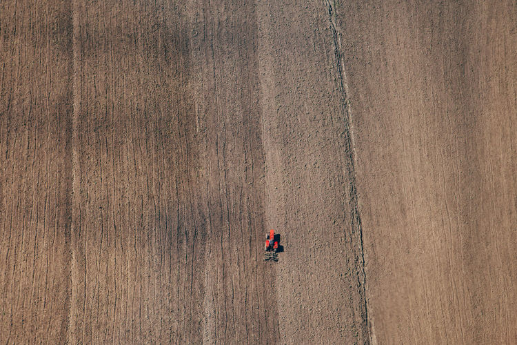 High angle view of man working at farm