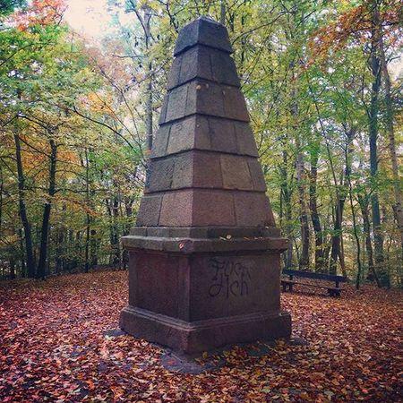 Worpswede Herbst Fürdich