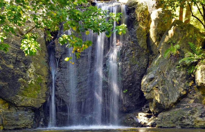 Tropical garden waterfall Nature Tree Beauty In Nature Growth Waterfall Water Scenics Freshness Plant Green Color Motion Taking Photos Enjoying Life Relaxing