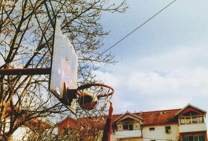 Sport Basketball Yashica