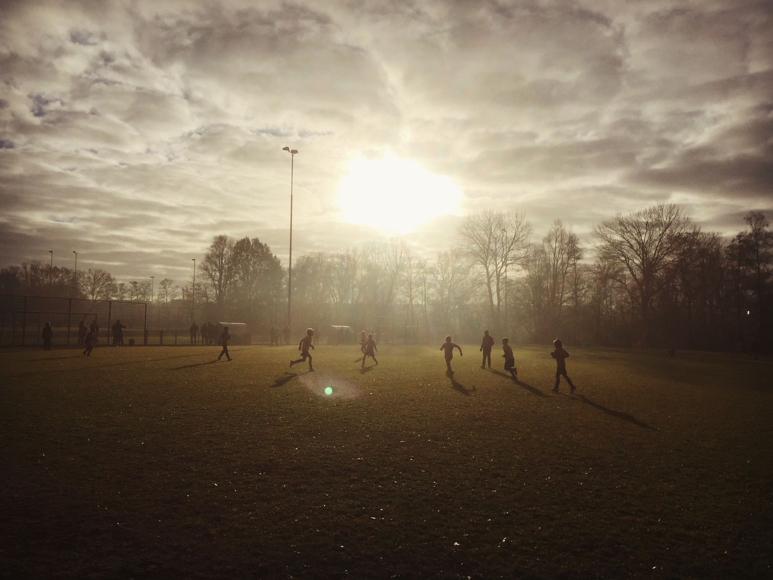 sky, sunlight, sun, sunset, tree, leisure activity, real people, silhouette, nature, large group of people, outdoors, men, landscape, beauty in nature, day, people