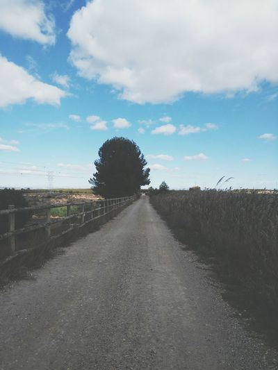 The Way Forward Cloud - Sky Sky Road Day No People Outdoors Rural Scene Tree Nature