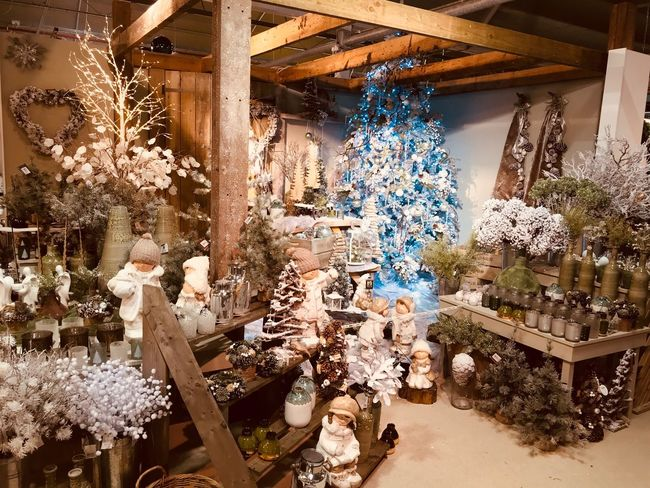 The works Xmas display Christmas Christmas Decoration Indoors  Celebration Christmas Tree Tree Christmas Ornament Illuminated Flower No People Day Nature Beauty In Nature