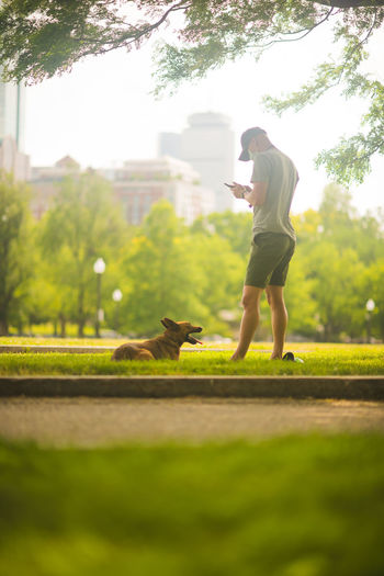 Side view of man with dog standing on mobile phone