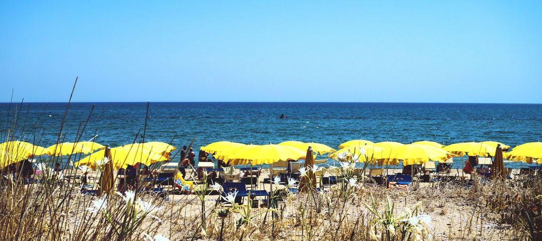 Paint The Town Yellow Italia Metaponto Beachphotography Beach Ombrella Ombrelloni Giallo Yellow