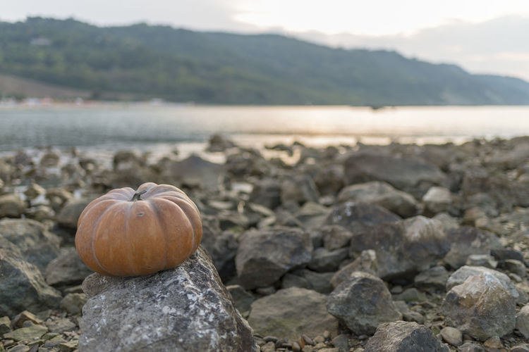 Close-up of pumpkin on rock by sea and mountain against sky