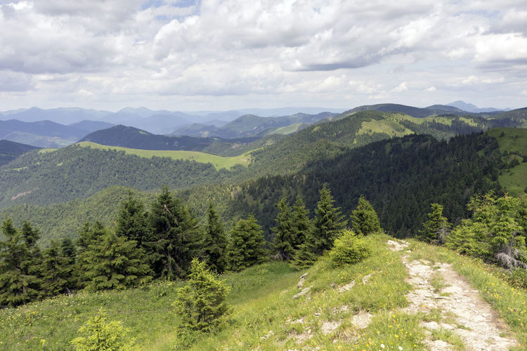 Velka Fatra Beauty In Nature Cloud - Sky Day Environment Green Color Growth Idyllic Land Landscape Mountain Mountain Range Nature No People Non-urban Scene Outdoors Plant Range Scenics - Nature Sky Tranquil Scene Tranquility Tree