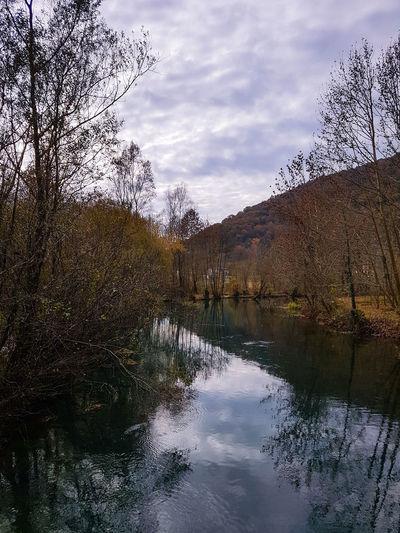 Water Tree Lake Mountain Reflection Sky Cloud - Sky