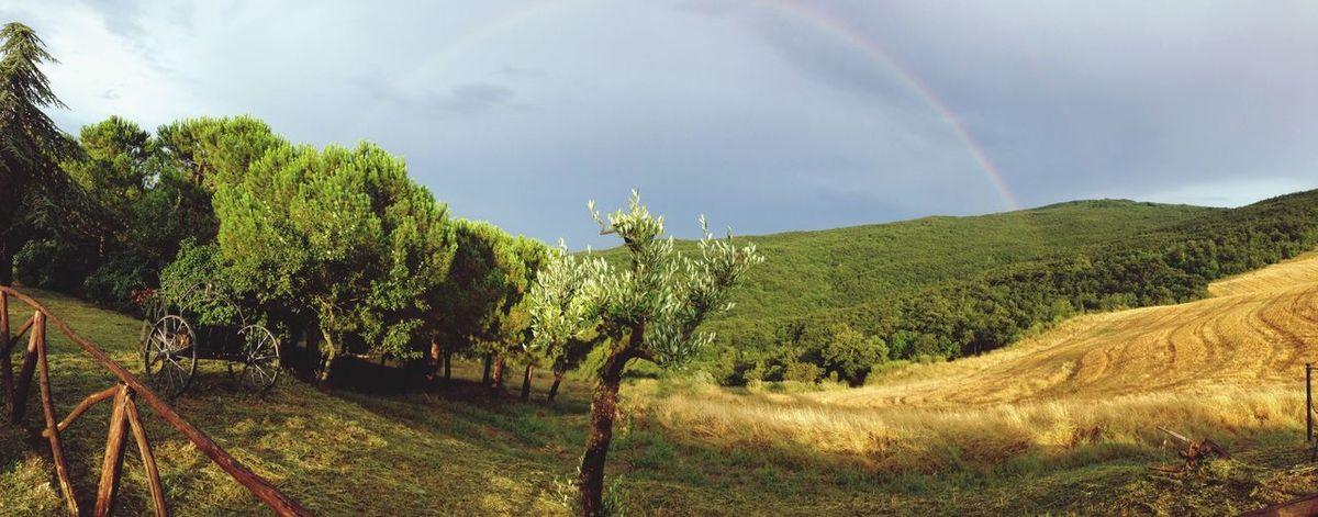 Rainbow Toscana Being A Tourist Weather Landscape