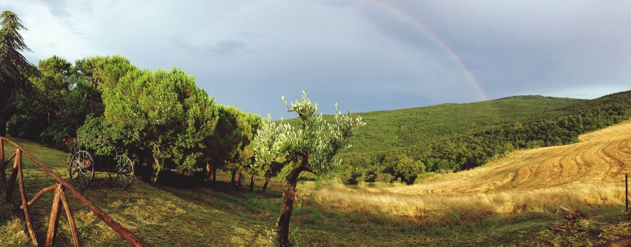 Rainbow Toscana Being A Tourist Weather Landscape
