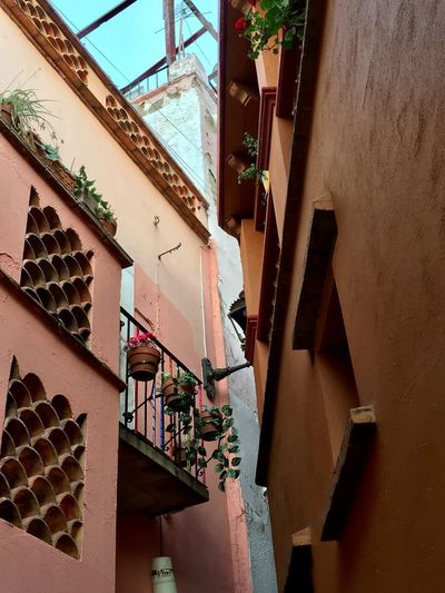Callejón del Beso - Guanajuato, Mex. EyeEmNewHere Callejondelbeso Callejón Architecture Built Structure Building Exterior Building Residential District Potted Plant Staircase Balcony Window Low Angle View House First Eyeem Photo