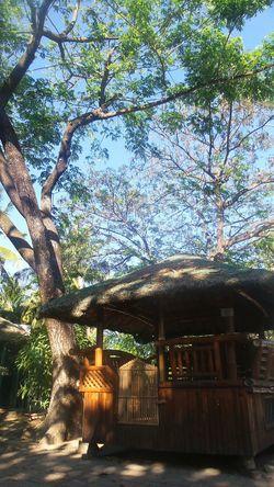 'bahay kubo' Eyeem Philippines Nipa Hut Philippine Culture Bahay Kubo Philippines Home Splash Island