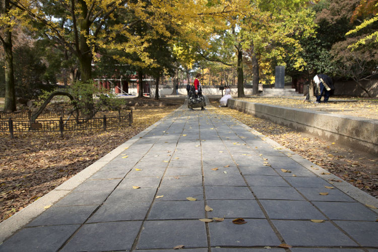 Side view of woman walking on footpath during autumn