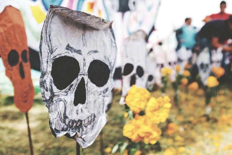 Creepy looking paper skull. Flower Outdoors Day Close-up No People Skull Dia De Los Muertos Guatemala Skulls And Flowers Fresh On Eyeem