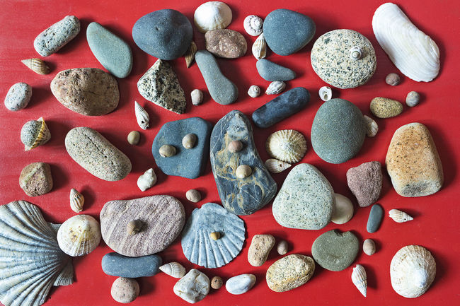 Stones background Background Colors Flat Lay Graphic Red Shell Stone Top View