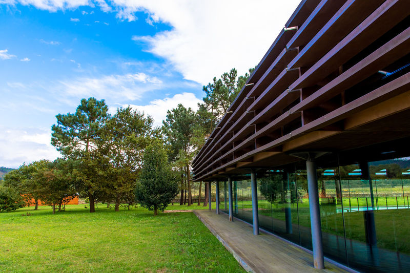Archeological Complex Architecture Blue Sky Built Structure Day Galicia, Spain Grass Growth Modern Building No People Outdoors Park Park - Man Made Space Sky Tree Trees