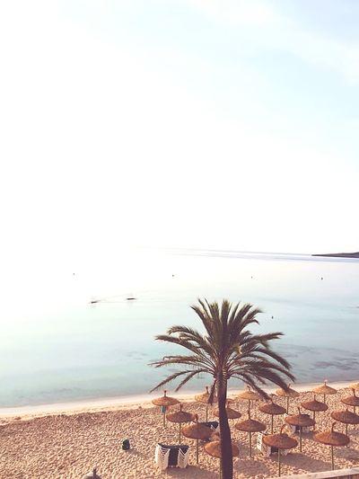 Mallorca cala