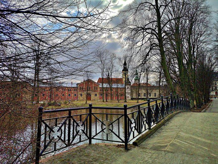 Footbridge over trees and buildings against sky