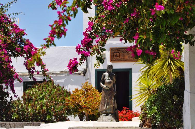 Lanzarote Tree Statue Flower Sculpture No People Outdoors