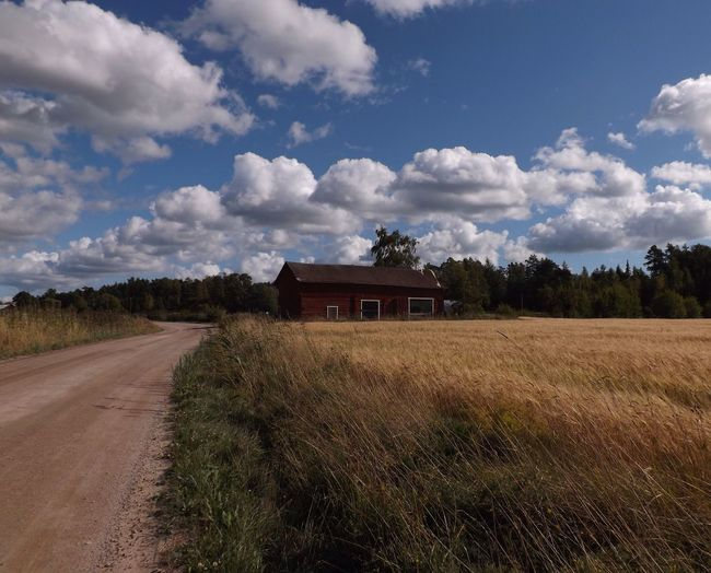 Wheat fields of the Finnish countryside Rural Barn Blue Sky Cloudy Sky Blue Sky With Clouds Field Wheat Field Finland Cloud - Sky Sky Plant Built Structure Tree Landscape Architecture Nature Road Land Rural Scene No People Agriculture Growth Building Exterior Environment Day