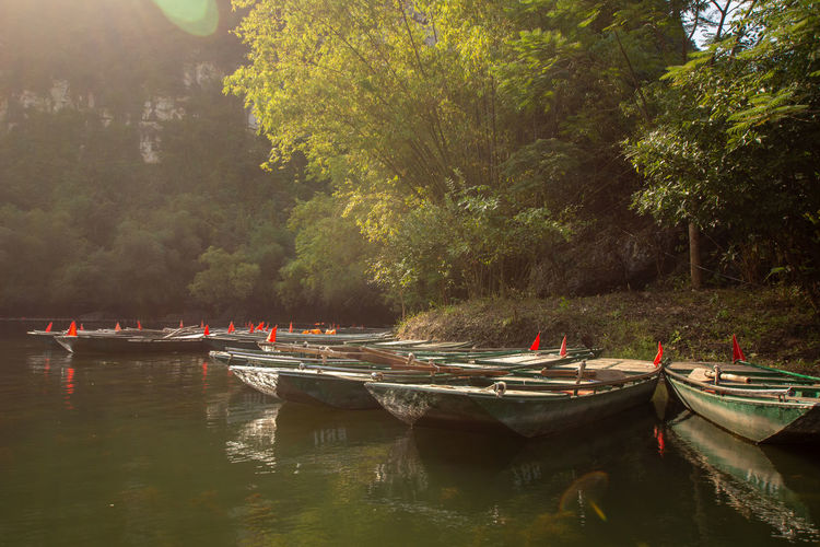 travel at Trang An, Ninh Binh, Vietnam Nautical Vessel Water Transportation Mode Of Transportation Tree Moored Plant Nature Day Reflection Tranquility Waterfront Beauty In Nature Tranquil Scene Scenics - Nature Outdoors Lake Travel Non-urban Scene No People Rowboat Fishing Boat Anchored