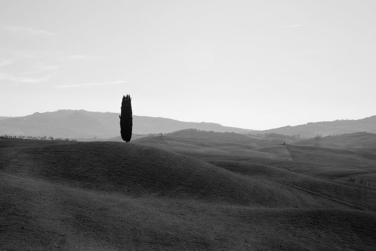 Pienza Pienza (toscana) Paesaggio Crete Senesi Siena Val D'orcia Cypresses Sky Landscape Environment Tranquil Scene Tranquility Beauty In Nature Scenics - Nature Mountain Day Nature Non-urban Scene Land No People Field Copy Space Clear Sky Plant Outdoors Transportation Idyllic Arid Climate