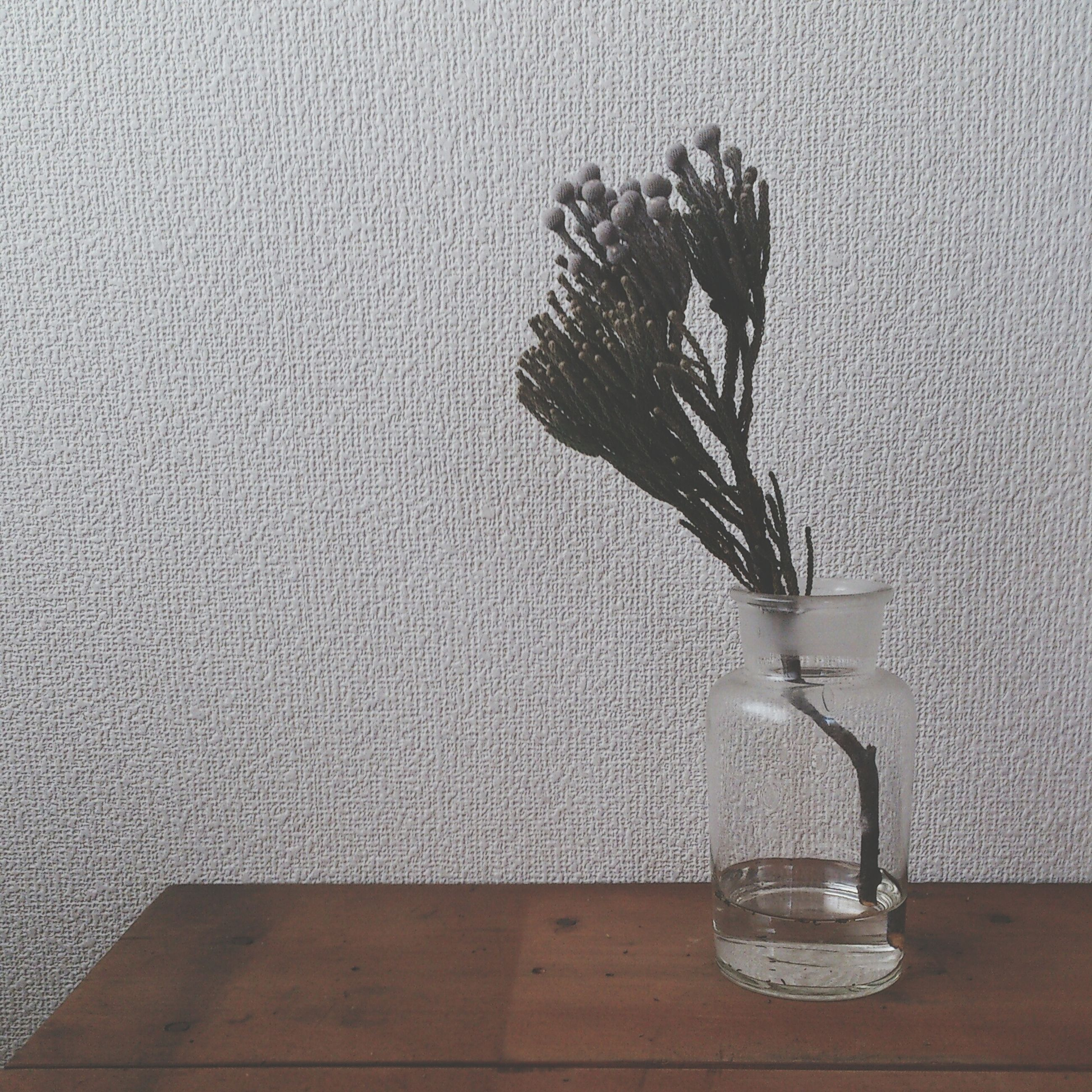 indoors, table, still life, vase, home interior, wall - building feature, shadow, close-up, high angle view, glass - material, no people, flower, wall, single object, decoration, wood - material, simplicity, domestic room, fragility, bottle