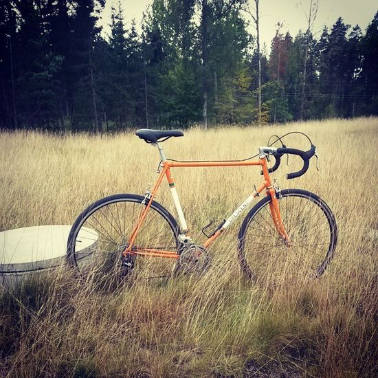 In nature w oldschool cross Luggedsteel Crescent Bikelife Cx Tange Oldschool Fahrrad Bicyle Velo Växjö  Sweden Nature