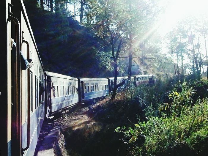 Tree Wet Nature Day No People Outdoors Water Sky Toy Train From Shimla Wow!!😋 Miles Away Miles Away The City Light