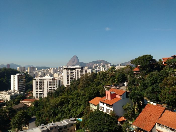 EyeEm Selects Cityscape of houses and buildings surrounded with lush tropical vegetation with Sugarloaf mountain and Guanabara Bay in the background. Mountain No People Day Outdoors Landscape Travel Destinations Sky City Cityscape Capital Cities  Tourism Sugarloaf Brazilian Urban Skyline High Angle View Coast Tropical Summer Horizon Over Water Landmark Sightseeing Scenics Metropolis Skyscraper