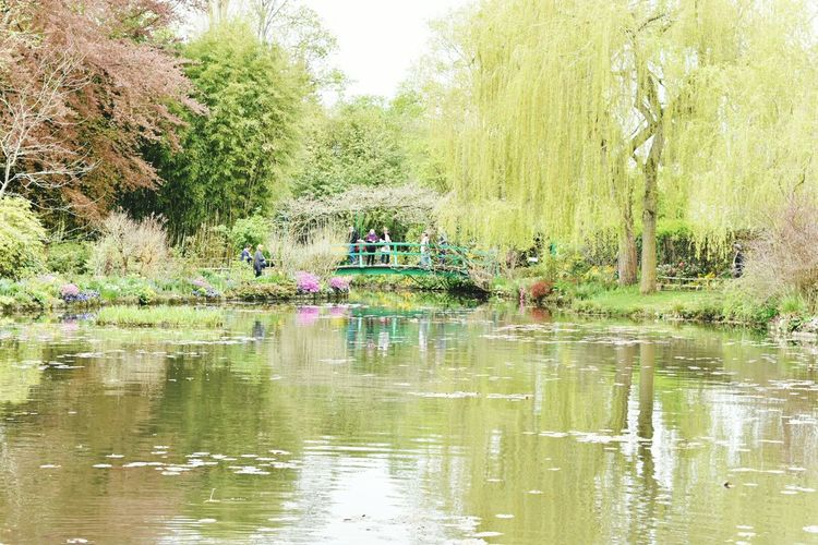 The Japenese Bridge over the Lily Pond at Claude Monet's garden at Giverny In The Tracks Of The Impressionists