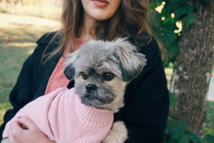 cute little dog wearing pink Dog Pets Cute Dog  Cute Pets Holding Human Body Part Human Hand Pets Friendship Portrait Dog Young Women Protruding Smiling Long Hair Close-up Puppy