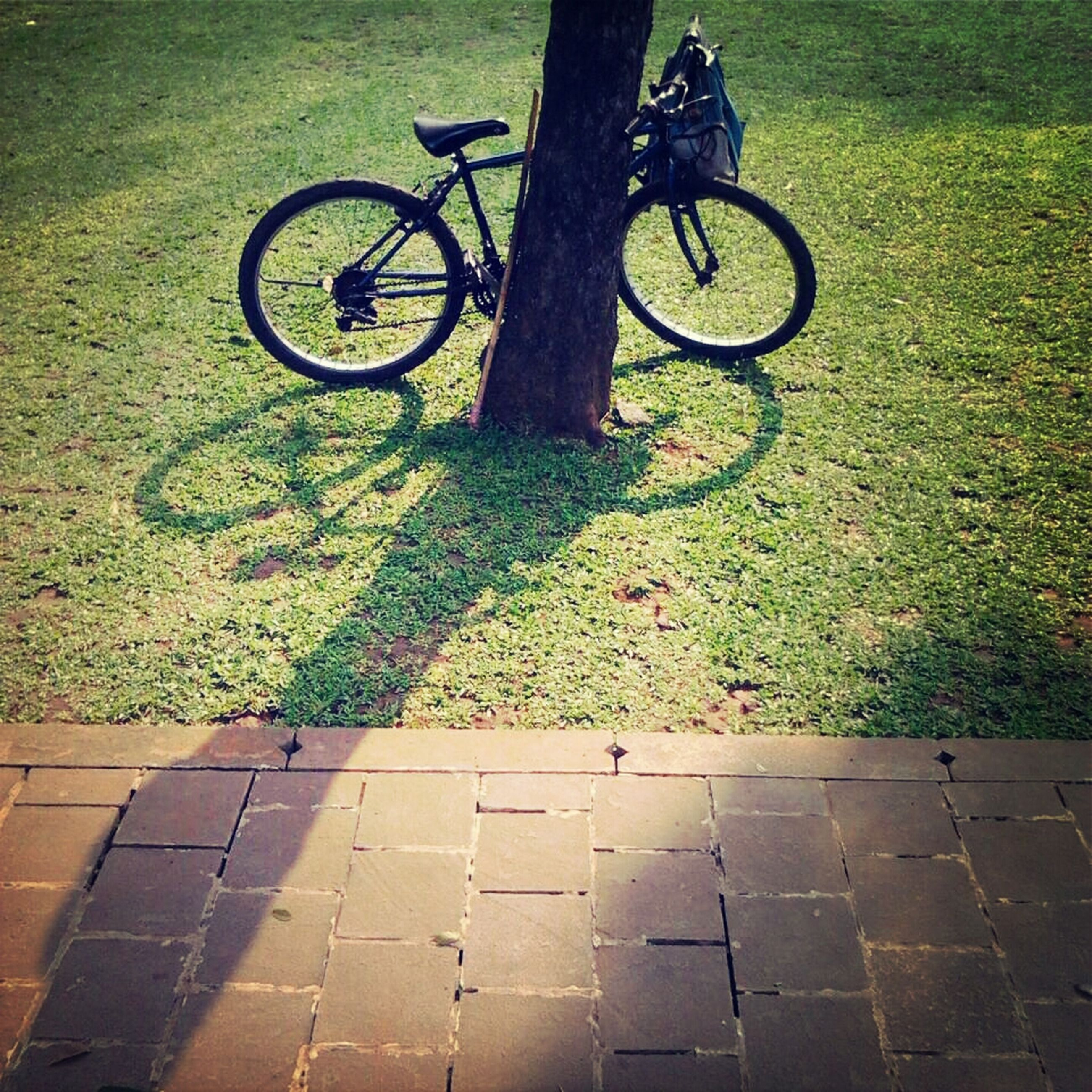 bicycle, transportation, land vehicle, street, mode of transport, cycling, grass, shadow, high angle view, road, sunlight, low section, riding, outdoors, wheel, leisure activity, day, lifestyles