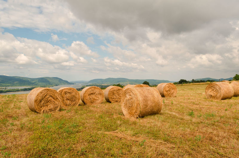 Hay bales on agricultural field against cloudy sky