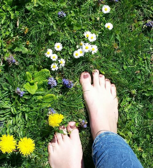 Barefoot Meadow Toes Feet Summer Flowers Grounded Meadows Feelings First Eyeem Photo