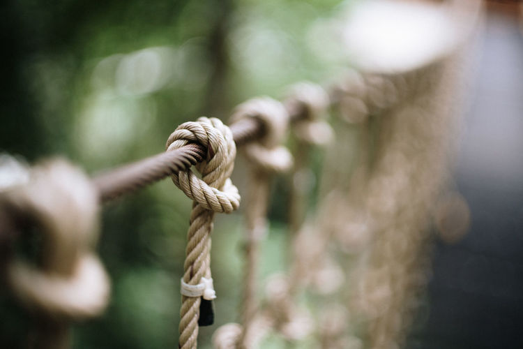 Close-up of rope tied on wooden post