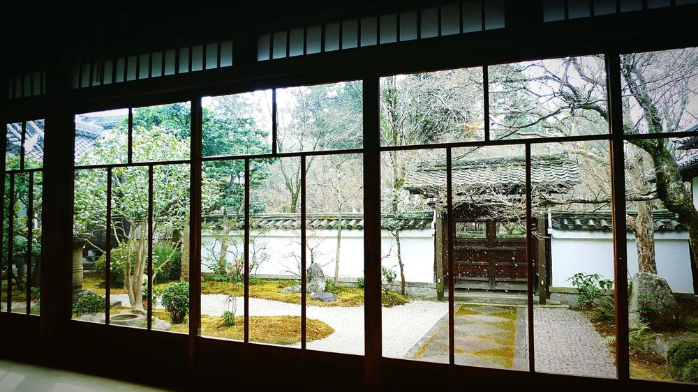 真如堂 真正極楽寺 雪の京都 京都 Kyoto Indoors  Kyoto, Japan Kyoto Garden Japanese Garden Travel Destinations Garden Window Snow Day Enjoying Life Relaxing