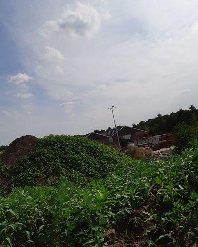 Tree Irrigation Equipment Agriculture Rural Scene Sky Cloud - Sky