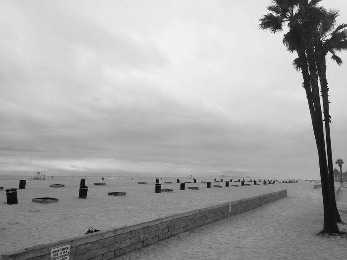 Huntington Beach Cloudy Morning Beach Beach Life Blackandwhite Photography Black And White