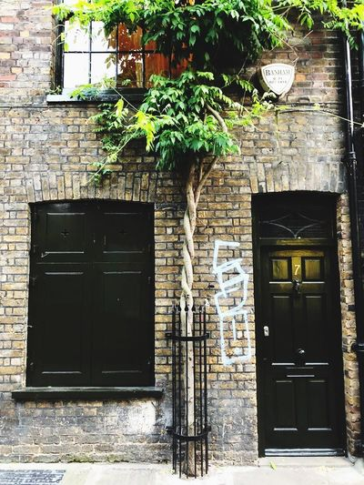 Tree Architecture Building Built Structure Building Exterior Entrance Door Plant House No People Residential District Window Wall Outdoors Day