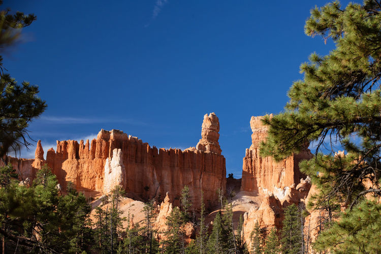 shiny rocks of Bryce Canyon Sky Beauty In Nature Nature Tranquil Scene No People Plant Tranquility Outdoors Bryce Canyon Rock Rock Formation Tree Rock - Object Blue Travel Scenics - Nature Travel Destinations Solid Non-urban Scene Geology Physical Geography Eroded Formation Arid Climate Climate