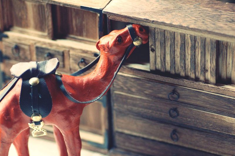 Camel Sculpture By Wooden Drawer In Room At Home