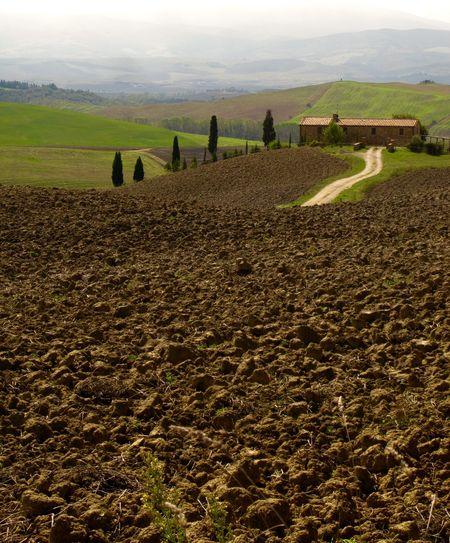 Agriculturee_photography]eLandscapescLandscape_photographypTuscany Italy Tuscany LandscapeaItaly❤️cItaliaaCountrysidelPienzapCipressi️CipresescOutdoorsdeLandscapeiRural SceneeTuscanydoors