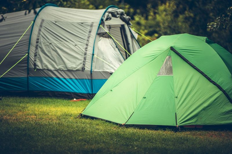 Campsite Campground Camping Campers Outdoors Tourism Travel Tent Tenting Survival Grass Plant Land Green Color Field Nature No People Day Textile Security Protection Focus On Foreground Shelter Sunlight Tranquility Environment Growth