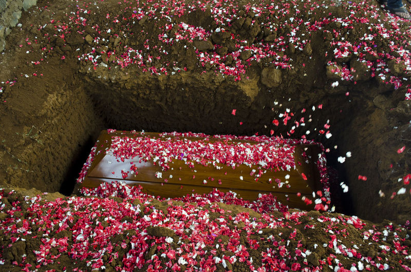 High angle view of flowers on coffin at cemetery