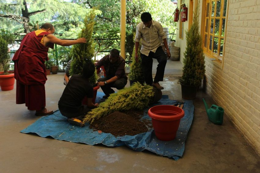 Replanting Monastery Monk  Directing Plants Pots Gardening Beautification Plants Are Important