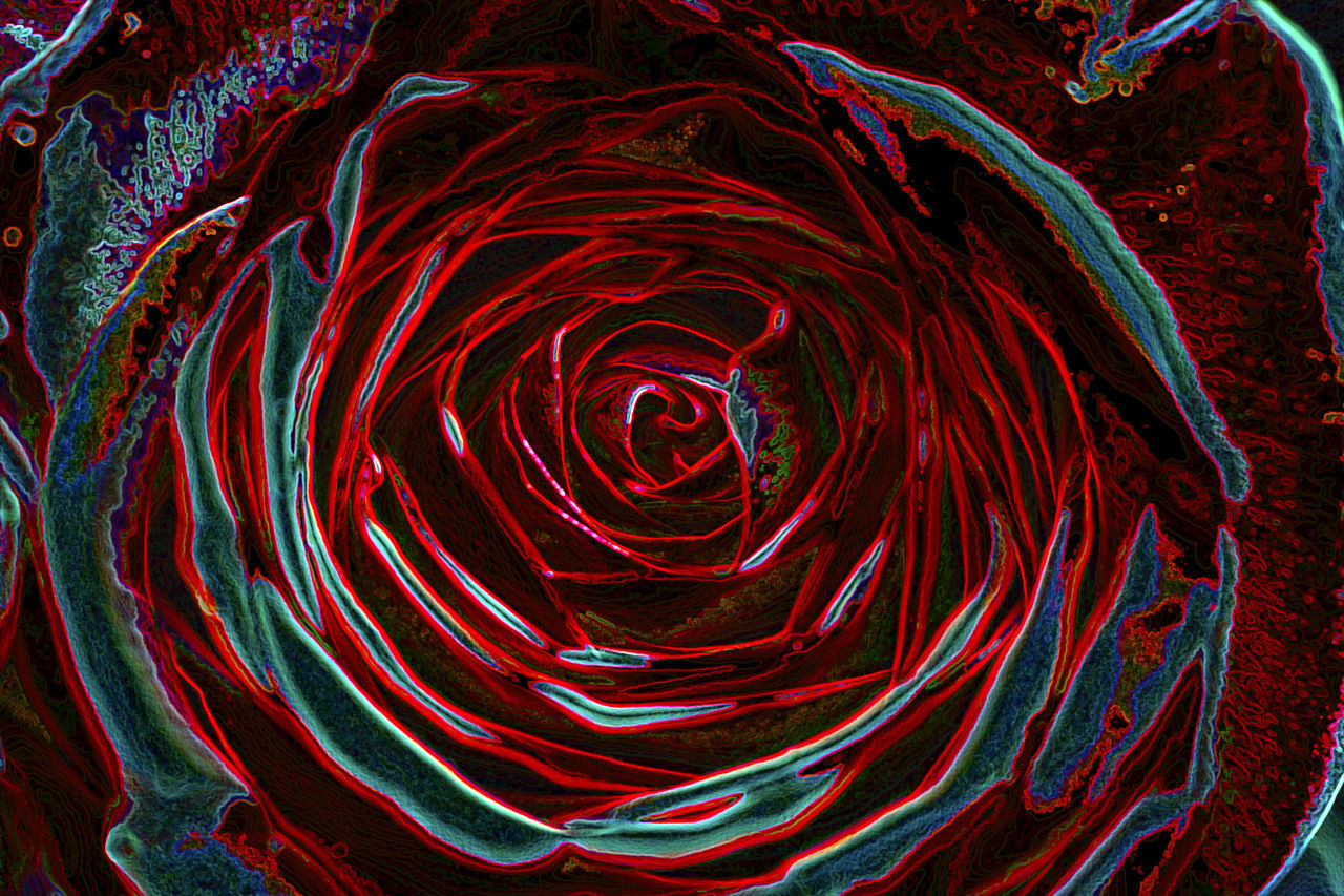 red, abstract, no people, science, close-up, day